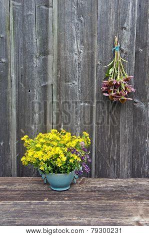Echinacea Purpurea Pink Coneflower Flower Bunch And St. Johns Wort In Vase