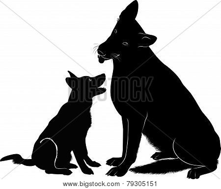 Shepherd dog with his puppy vector