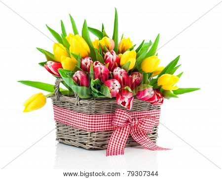 Colorful Tulip Blooms In A Basket