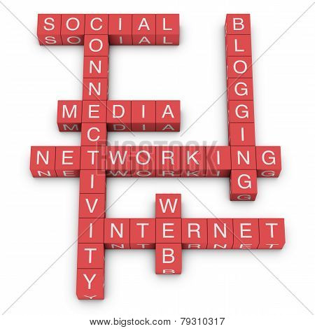 Social Media And Networking Crossword