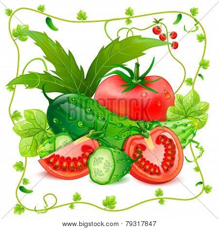 Tomatoes and cucumbers vector