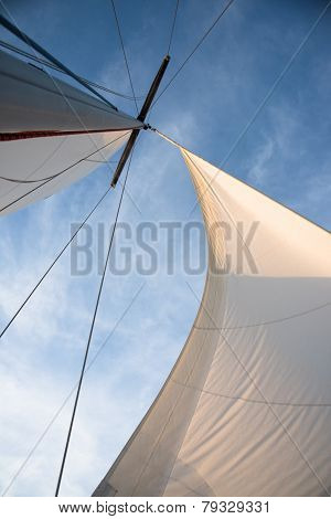 White Sails Against Blue Sky
