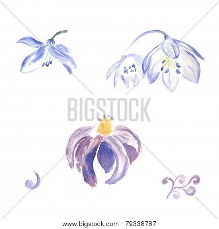 Watercolor violet flowers