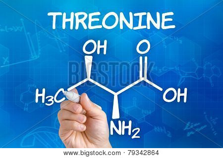 Hand with pen drawing the chemical formula of threonine