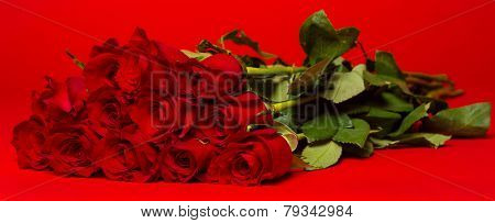 A dozen of long stemmed red roses on a red background