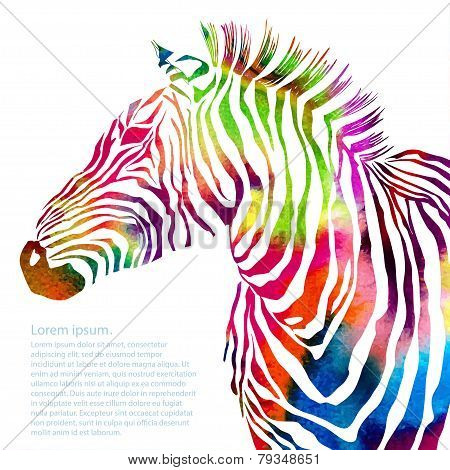 Animal illustration of watercolor zebra silhouette