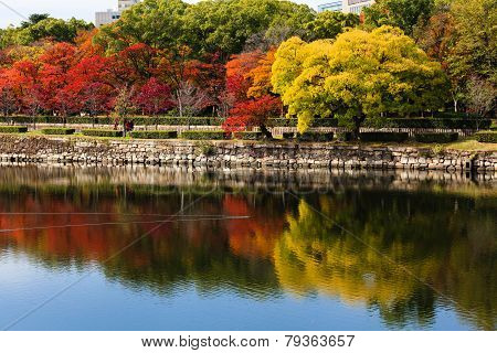 Colorful Autumn Leaves Reflecting On The Water