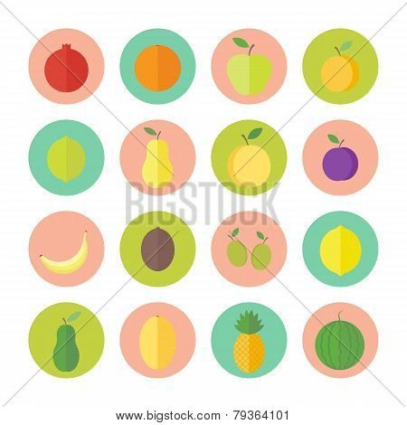 Flat Vector Circular Icons For Web Design Fruits And Berries