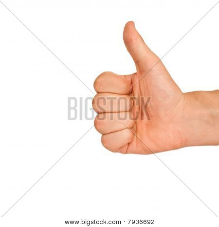 The Thumb Lifted Upwards On A White Background