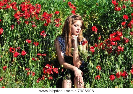 Thoughts In Poppy Field