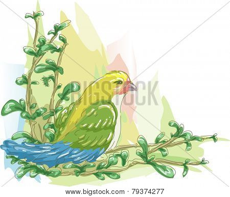 Sketchy Illustration of a Colorful Lovebird Perched on the Branch of a Tree