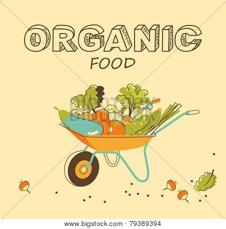 Organic vegetables concept