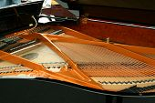 picture of string instrument  - The strings inside the black piano instrument - JPG
