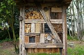 image of insect  - Insect hotel from natural materials for many kinds of insects - JPG