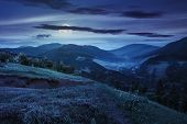 pic of moon-flower  - composite mountain landscape - JPG