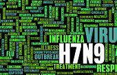 image of avian flu  - H7N9 Concept as a Medical Research Topic - JPG