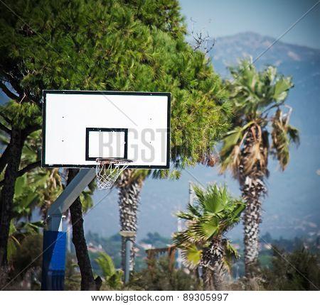 Basketball Hoop In A Green Park