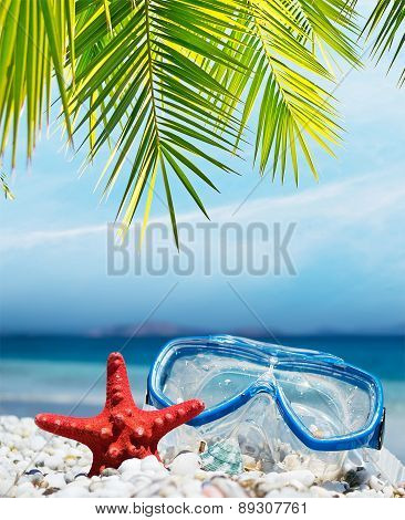Diving Mask Under The Palm