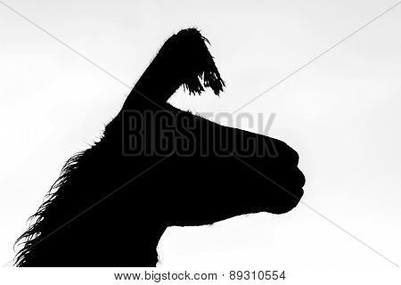 the silhouette of a lama