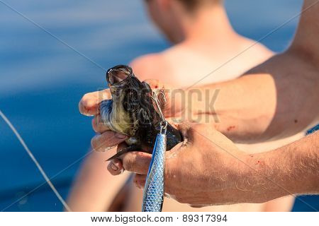 Saltwater Fishing - Fisherman Holding Fish
