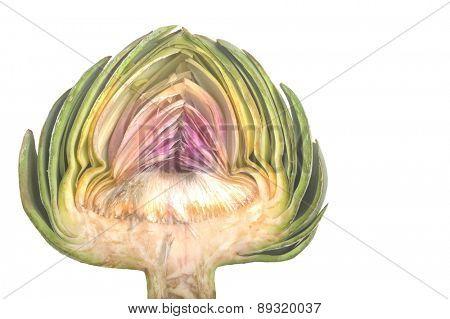 Nice Isolated Image of a Organic artichoke