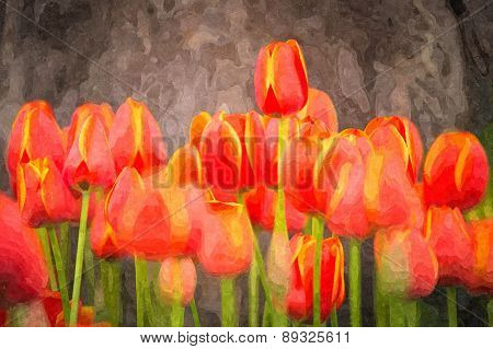 Tulip, Oil Painting & Water Color Style
