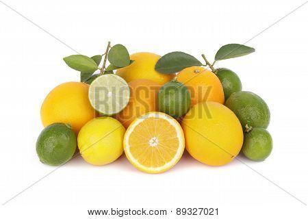 Mix of fresh citrus fruits on white background