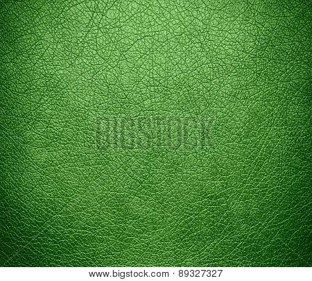 Bud green color leather texture background