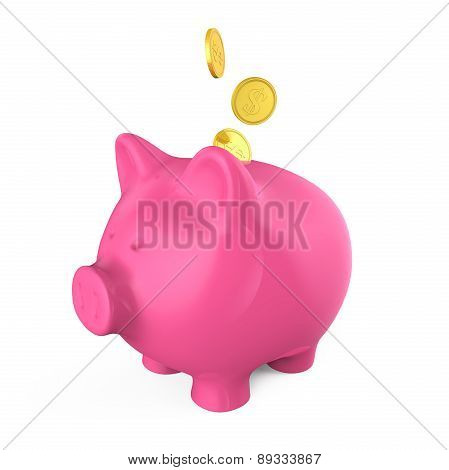 Piggy Bank and Money Coin