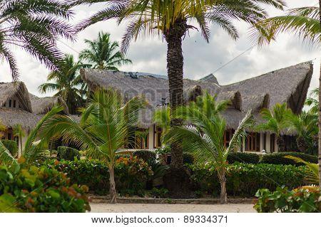 Wild caribbean beach. Dominican republic. tropical sand beach in dominican republic. tranquil resort