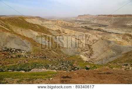 Spring in the Negev desert in Israel.