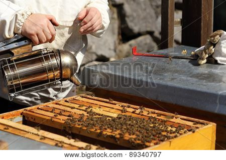 Bee Keeper With Smoker