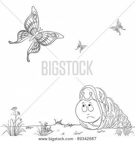 Snail and butterflies, contours