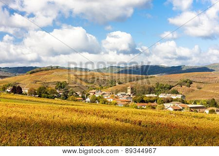 village Salles-Arbuissonnas-en-Beaujolais with vineyard, Rhone-Alpes, France