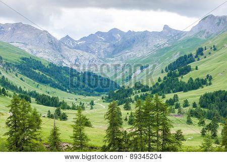 Vallon du Lauzanier, Mercantour National Park, France