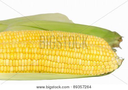 Sweet Corn Texture