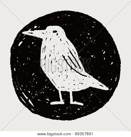 Crow Doodle