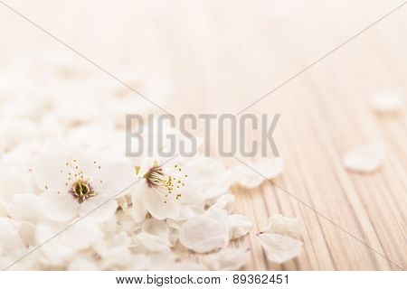 Flowers On Wooden Ground