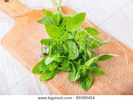 Fresh Oregano On The Kitchen Board