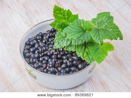 Blackcurrant In A Bowl