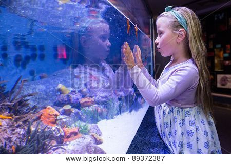 Young woman touching a starfish-tank at the aquarium