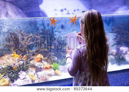 young woman drawing starfish in a tank at the aquarium