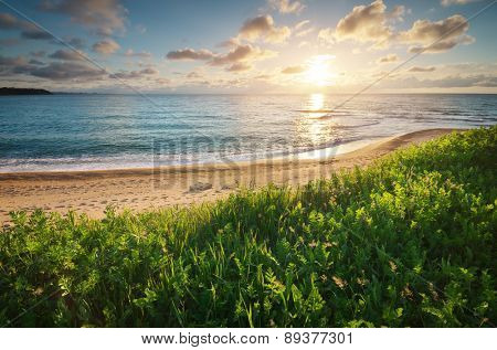 Sundown seascape composition. Sky, sea, and green grass. Relax on the sea.