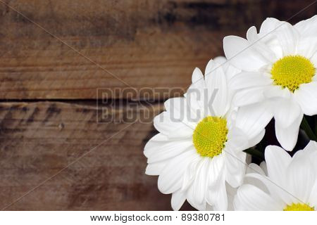 Daisy Flowers On Wood