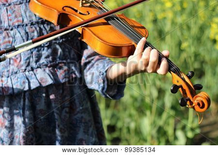 playing the violin in the field