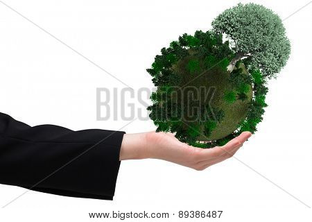 Businesswomans hand presenting against tree with green leaves growing
