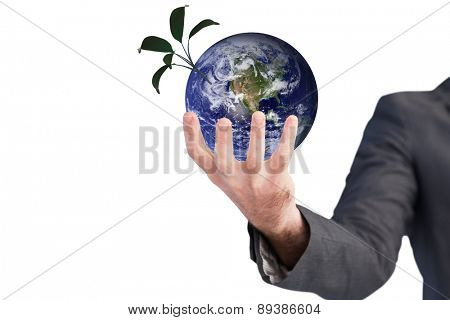 Businessman presenting with his hands against little green seedling with leaves growing
