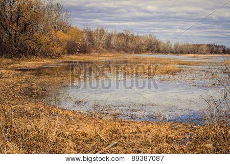 Great Lakes Coastal Wetlands