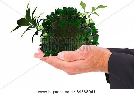 Businessman holding his hands out against little green seedling with leaves growing