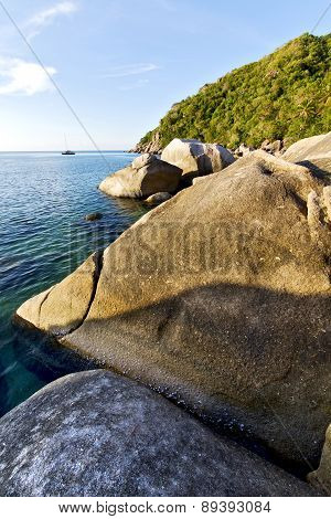 Stone In Thailand Kho Tao Bay Abstract Of A Blue Lagoon    South China Sea